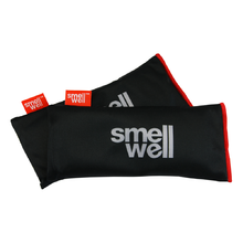 SmellWell Active XL Black Stone Desodorierer